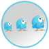 twitter community building Twitter Marketing
