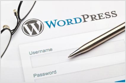 wordpress design optimization Social Media Marketing